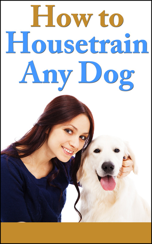 Product picture How To Housetrain Any Dog  2014