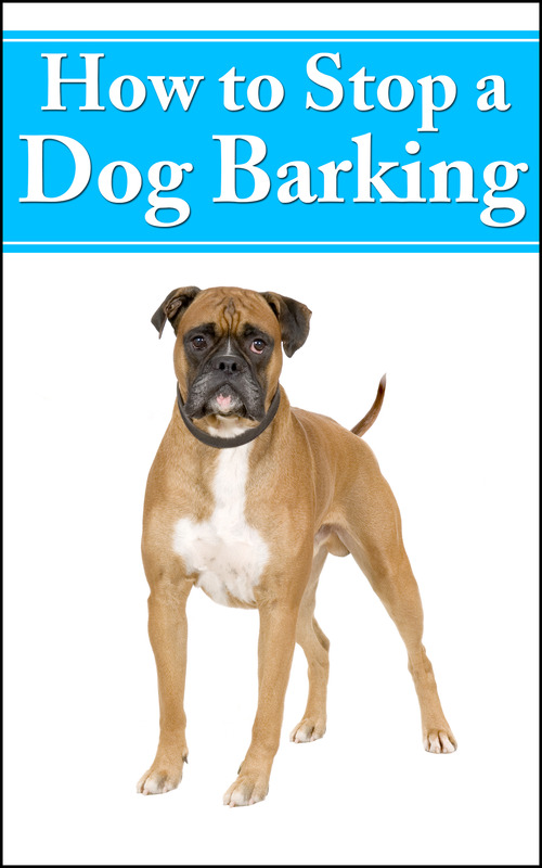 Product picture How To Stop A Dog Barking 2014