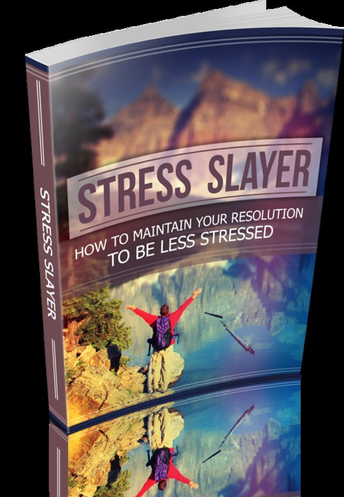 Product picture Stress Slayer 2014